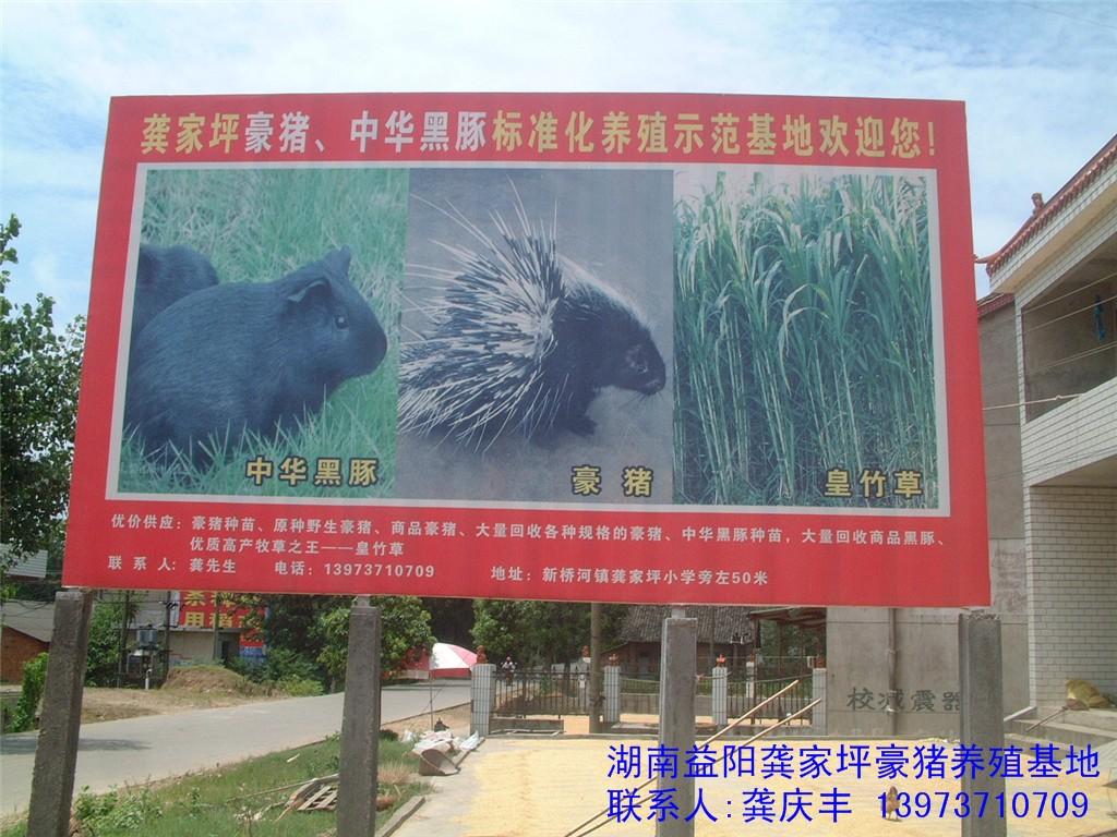 持  野生动物驯养繁殖许可证>>