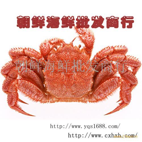 朝鲜红毛蟹-朝鲜海鲜批发商行.