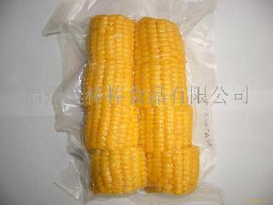 非转基因甜玉米段