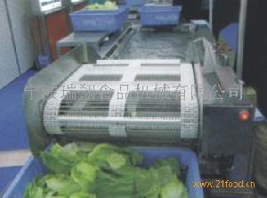 白菜(苞菜)清洗机
