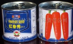 春播蔬菜胡萝卜种子红春秀