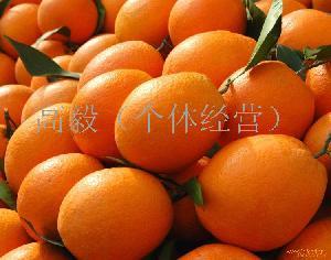 紐荷爾/長紅/臍橙