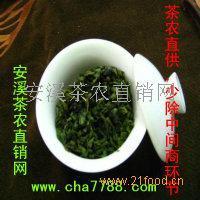 福建铁观音春茶