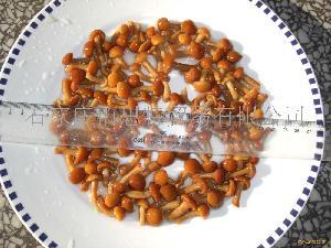 盐渍滑子菇