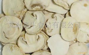 冻干双孢菇片