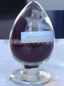 厂家直销 蓝莓提取物 花青素25% 越橘提取物