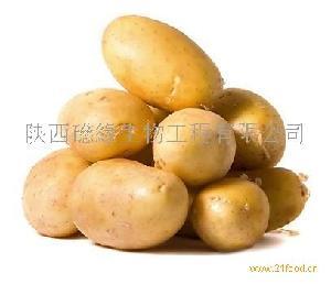 马铃薯蛋白