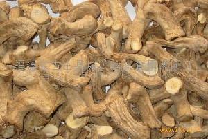 供应批发香菇脚