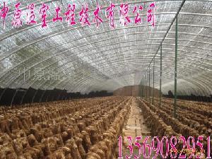 蔬菜花卉钢架大棚骨架机