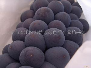 京亚葡萄(袋内)
