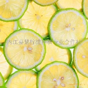 柠檬干切片