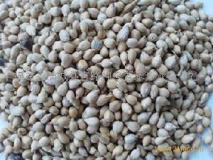 浦城壳薏米