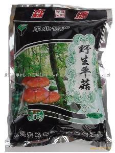 大兴安岭天然野生榛蘑