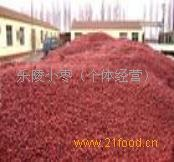 乐陵大红枣