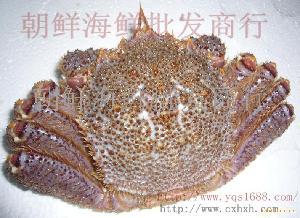 北海道红毛蟹