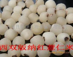云光109号高钙米婴儿补钙正品一级优质米