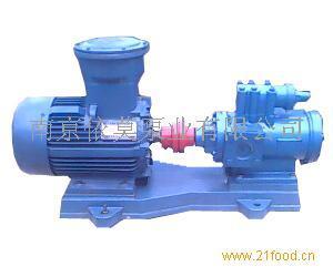 国产化进口泵