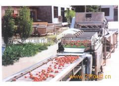 草莓生产线