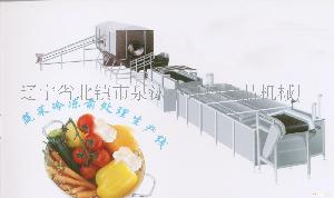 蔬菜冷冻前处理生产线