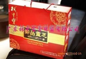 林中宝粤北香菇