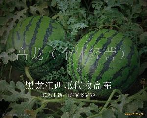 黑龙江西瓜甜瓜