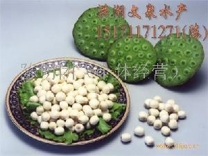 新鲜莲子米