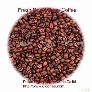 咖啡机 意大利Saeco/喜客品牌维拉Villa全自动商用/家用