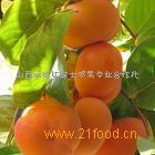 胎里红柿子
