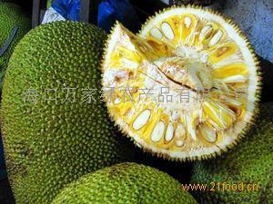 水果菠萝蜜