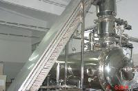 真空低温油炸膨化机