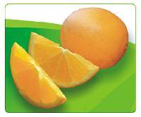 五豐贛南臍橙