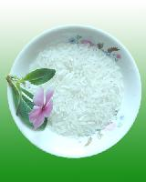 优质早籼稻(嘉早312)