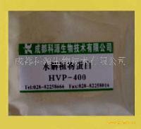 水解植物蛋白HVP-400