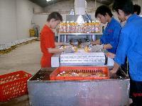微波食品饮料杀菌设备
