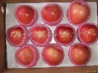套袋红星苹果