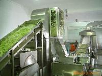 蔬菜脱水烘干成套生产线
