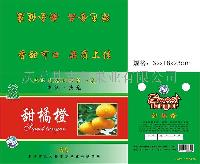 志东牌甜桔柚(甜桔橙)