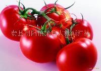 费县胡阳粉红西红柿
