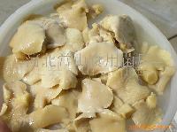 食用菌平菇