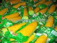 真空包装黄糯玉米