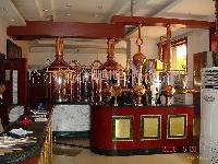 300升微型啤酒设备