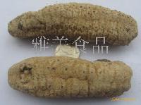 澳洲黄肉参