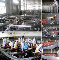 草莓罐头生产线