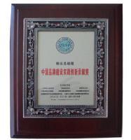 中国品牌建设实践创新贡献奖