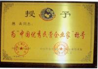 中国优秀民营企业家称号