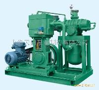 JZJW型罗茨-立式无油往复泵机组