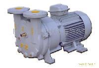 2BVF型液环真空泵