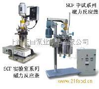 SCF实验室系列磁力反应釜
