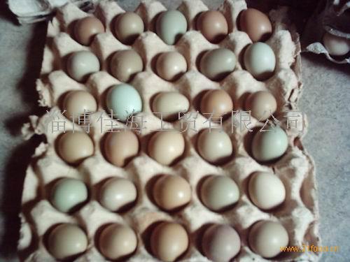 野鸡蛋840枚/箱